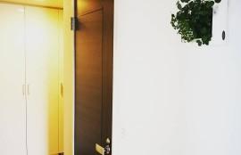 片づいた玄関